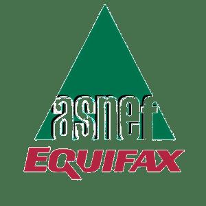 Asnef - Equifax logo
